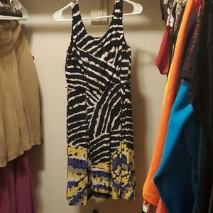 Wild fun fancy dress